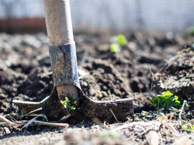 gardening-gardener-01