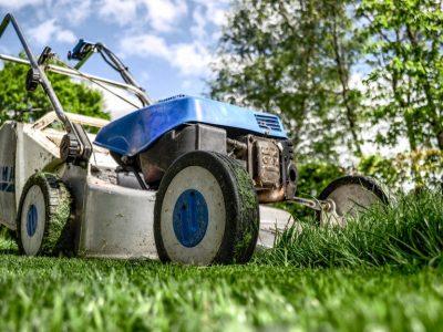 gardening-gardener-02